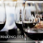 My Wine Class @ Agua Dulce Vineyards