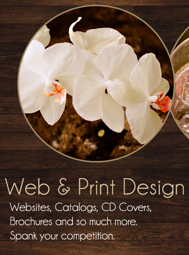 los angeles food photographer, web designer, graphic designer